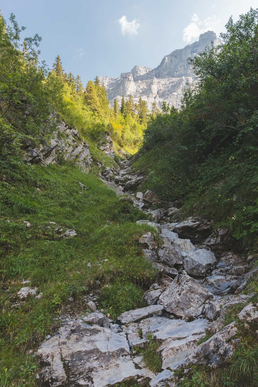 Glacial streams in kleine scheidegg