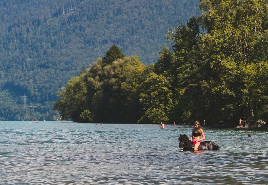 Lake Thun Horse Riding
