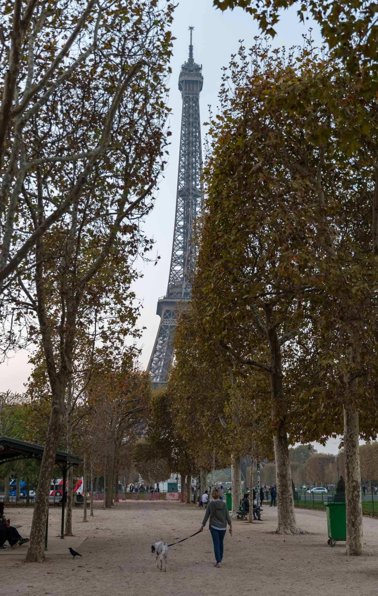 beautiful view of Eiffel tower